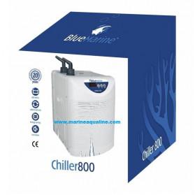 Blue Marine - Refrigeratore 800