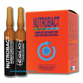 EQUO Nutrobact 24 Fiale da 5ml