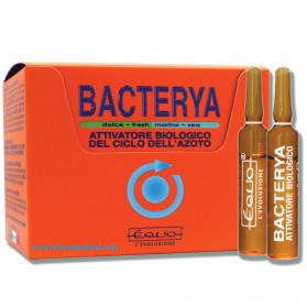 EQUO Bacterya 24 Fiale Da 5ml
