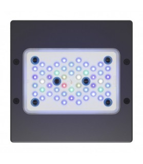 Plafoniera Led Radion XR15w G5 Blue