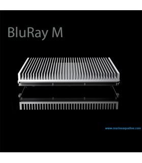 GNC BluRay M