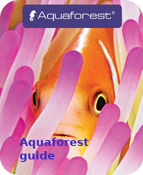 Aquaforest guide